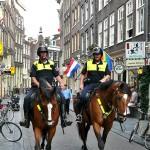 Politie-te-paard